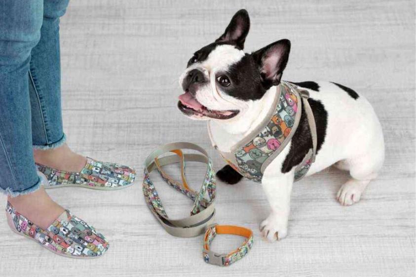 Licensing International Awards - Skechers USA / BOBS for Dogs: